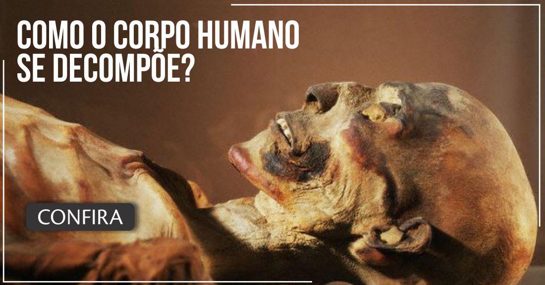 Portal do Médico - Como o corpo humano se decompõe?